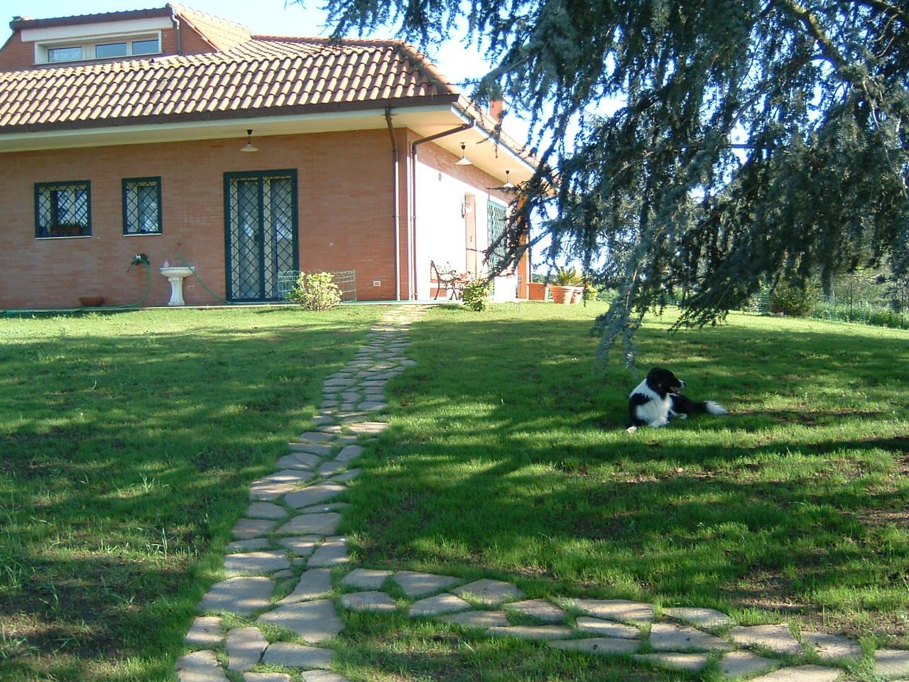 Sentiero fai da te in un giardino in discesa pagina 10 forum di - Soluzioni giardino ...
